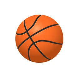 Basketball ball on white backround vector