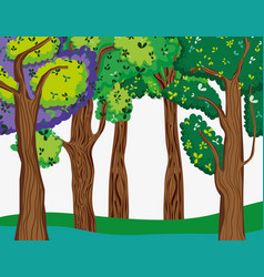 beautiful forest scenery vector image
