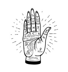 Palmistry mystic hand graphic hand vector