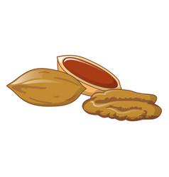 Pecans icon cartoon style vector