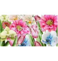spring flowers background watercolor vector image