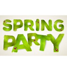 Spring Party words made from green leaves vector image