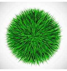 Background with circle of grass vector image vector image