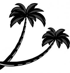 palm tree silhouettes vector image