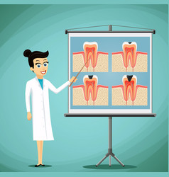 Doctor dentist shows on a blackboard diagram of vector
