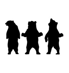 bear silhouette animal vector image