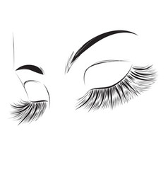 Closed female eyes drawing vector