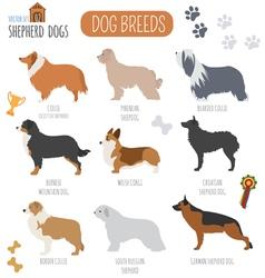 Dog breeds shepherd set icon flat style vector