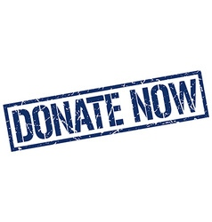 donate now stamp vector image