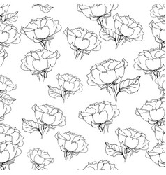 Seamless pattern with liner black roses on white vector
