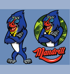 set of cartoon mandrill monkey character vector image