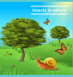 Snail insects nature poster vector