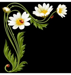 corner pattern with daisies and ladybug vector image