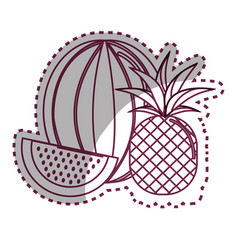 Sticker silhouette watermelon and pineapple fruit vector