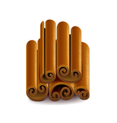 cinnamon isolated on white vector image vector image