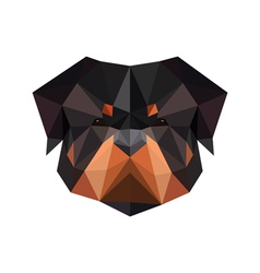 Abstract polygonal dog rottweiler vector