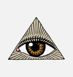 Face detailed seeing eye in the triangle fashion vector