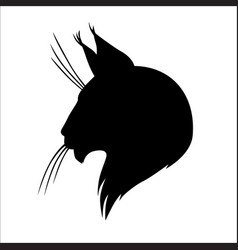 Maine coon cat silhouette head vector