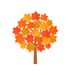 Maple tree with yellow leaves vector
