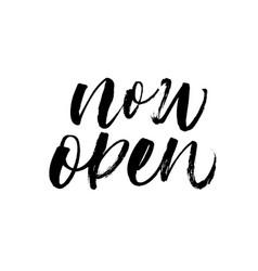 now open phrase modern calligraphy vector image