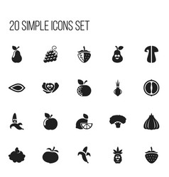Set of 20 editable food icons includes symbols vector