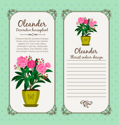 vintage label with flower oleander vector image