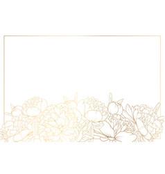 peony rose flowers border frame bottom horizontal vector image vector image