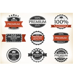 Premium Quality and Guarantee Labels vector image vector image