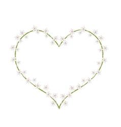 White Madagascar Jasmine Flowers in A Heart Shape vector image vector image