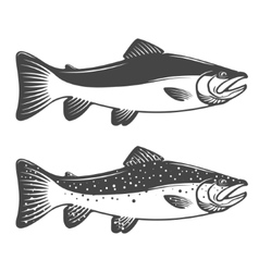 Set of trout icons design elements for fishing vector