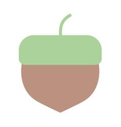 Acorn nut fruit autumn icon vector