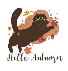 autumn cat and inscription hello vector image