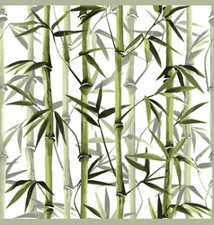 Bamboo seamless vertical border on white vector