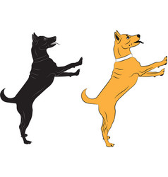 Dog jumping asking someone something vector