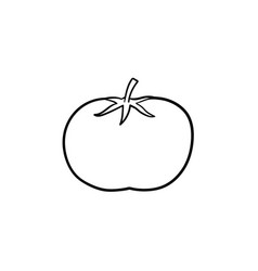 organic tomato hand drawn sketch icon vector image