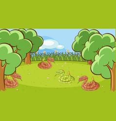scene with rattlesnakes in garden vector image