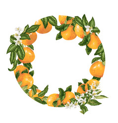 Template decorative element with citrus fruits in vector