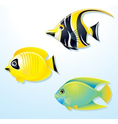 tropical exotic fishes vector image