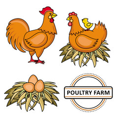 flat poutry farm chicken set vector image vector image