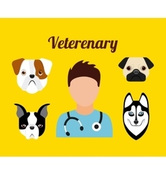 pet service design vector image