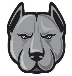 pit bull head - pit bull terrier vector image vector image
