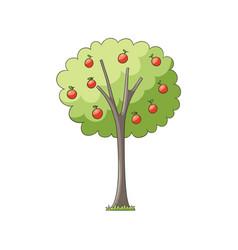 flat apple tree isolated vector image