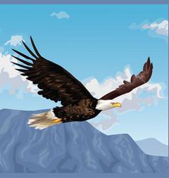 Eagle flying over landscape drawing vector