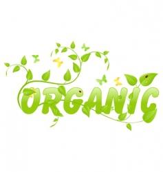 eco organic vector image vector image