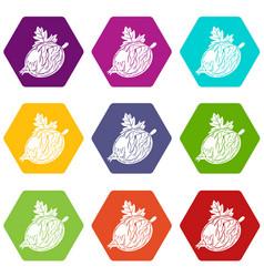 gooseberry icons set 9 vector image