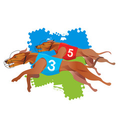 Greyhound dogs racing vector