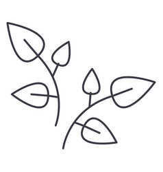 leaf branches line icon sign vector image