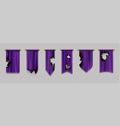 old burn pennant flags mockup purple blank banners vector image
