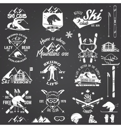 Ski club design vector image
