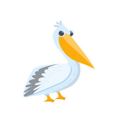 White pelican with big beak and eyes standing vector